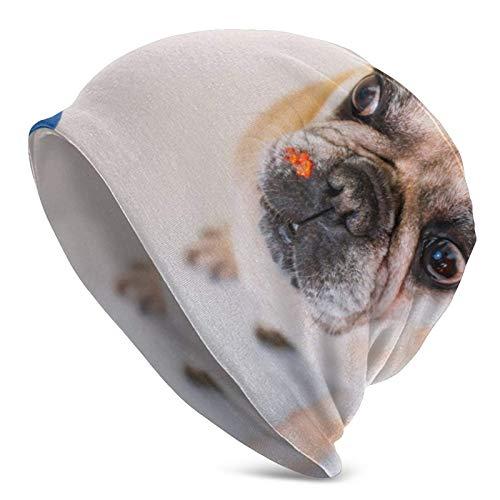 QUEMIN Bolsa Cute Little French Bulldog Paint Culture Religion Art Skull Cap Gorro elástico Gorros Holgados Tejido de Invierno Sombreros de Moda para Mujeres Hombres