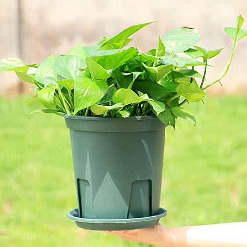 elegantstunning Pot de Fleurs Pratique en Plastique pour clématite en Porcelaine Vert, Caliber 18cm Flowerpot