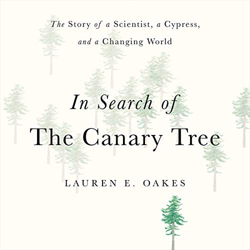 In Search of the Canary Tree cover art
