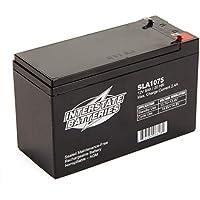 Interstate Batteries 12V 8AH SLA Battery (.187 Faston terminals)