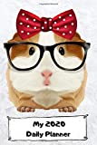 "MY 2020 DAILY PLANNER: Funny Novelty Calendar 2020 Daily  Weekly & Monthly Calendar Planner. 1.1 - 31.12. 2020 - Guinea Pig Lady - calendar Gift with ... handbag -  365 Day Planner Journal (6""X9"")"