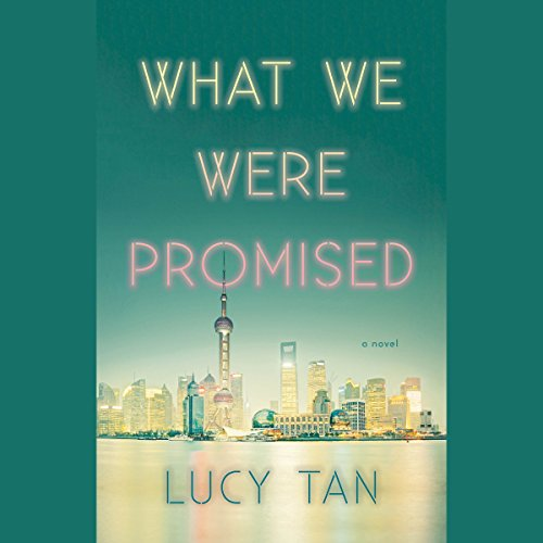Couverture de What We Were Promised