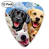 Guitar Pick Semi-Round Animal Dog Set Pug Chihuahua Dachshund Golden Retriever Face Guitarra Plectrums, paquete de 12