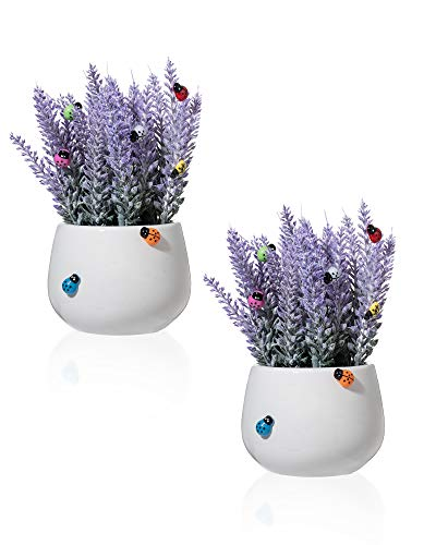 MiaTen Set of 2 Potted Lavender Artificial Flowers Realistic Mini 7' H Plants Decoration in White Ceramic Pot & 7 Colors Self-Adhesive Mini Ladybugs Stickers for Home Office Living Bathroom Room Decor