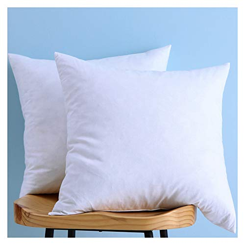 LunarTex Set of 2, Cotton Fabric Pillow Inserts, Down and Feather Throw Pillow Insert, 22X22 Inches