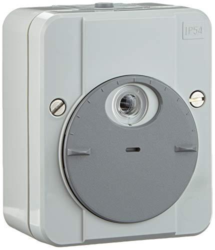 Merten 544894 ARGUS - Interruptor crepuscular, sin retardo de conmutación, color gris