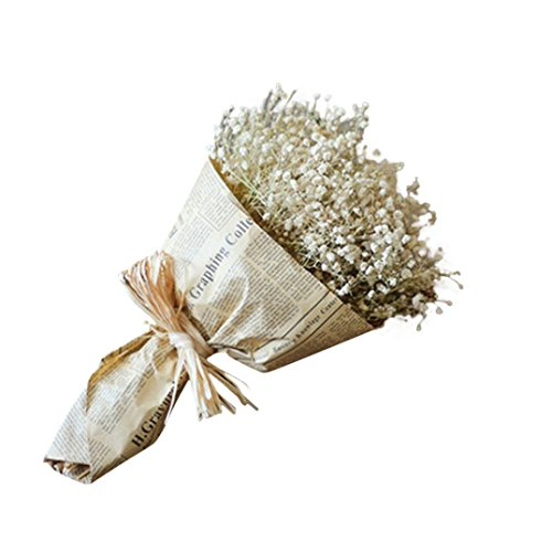 CLEARANCE! MEIbax natürliche getrocknete blume schleierkraut die einrichtung von getrockneten blumen voller sterne gypsophila (Weiß)