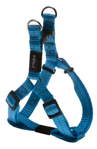 Rogz for dogs nitelife step-in h turquoise 11 MMX27-38 CM