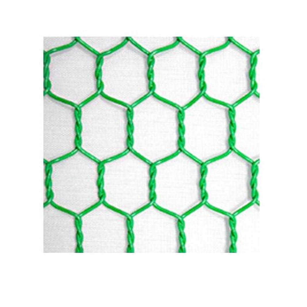補体協力する一般的に言えばビニール亀甲金網 (緑) 線径番18 線径1.15mm 目合40mm 幅910mm×長さ30m 【光洋金網】 代引不可