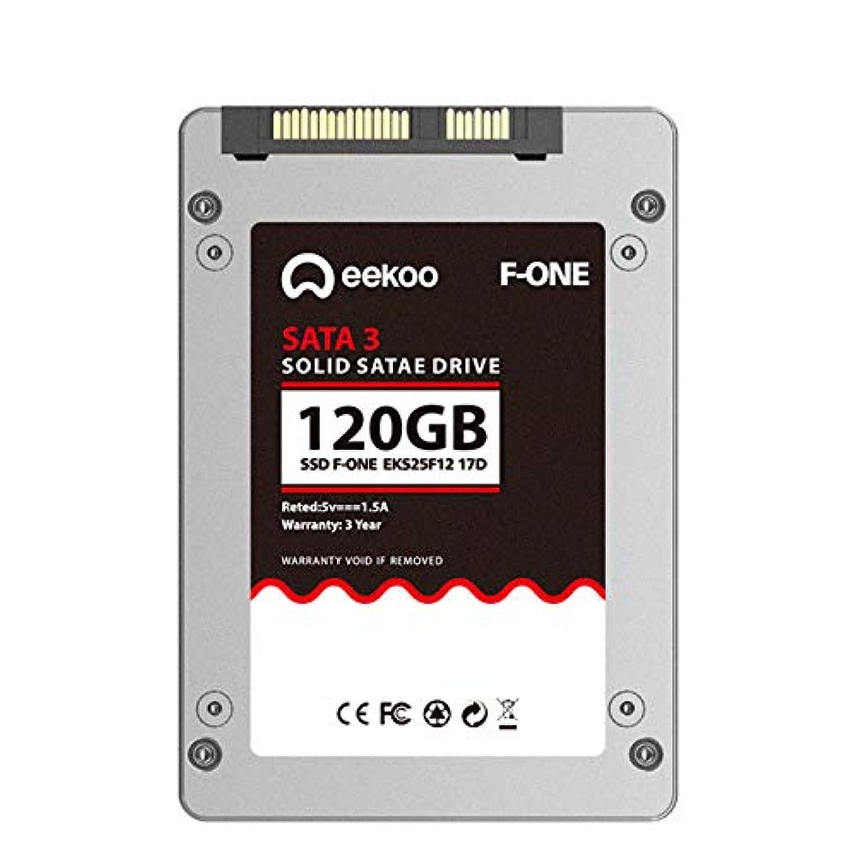 大声で最悪パイロットOUYAWEI eekoo SSD SATA3 2.5インチ 60GB/120G/240G/480G ソリッドステートドライブ シルバー 120G MLC