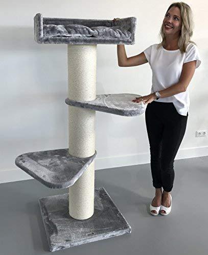 Rascador para gatos grandes Royalty Gris claro baratos arbol xxl maine coon gato adultos gigante sisal muebles sofa escalador torre Árboles rascadores cama cueva repuesto medianos: Amazon.es: Productos para mascotas