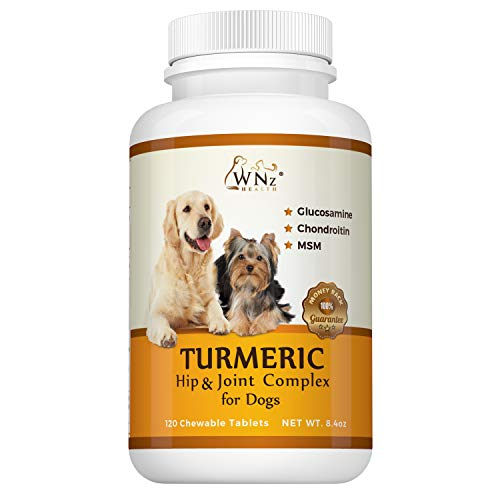 Top 10 best selling list for supplements for dog torn acl