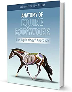 Anatomy of Equine Bodywork;the Equinology® Approach