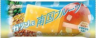 赤城乳業 ガツン、と 南国フルーツ90ml×24袋