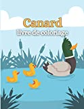 Canard Livre De Coloriage: Pour les enfants ,taille du livre 8,5 x 11 un dessin sur chaque page, comprend des canards de bande dessinée, des canards de la ferme, des canards de bébé.