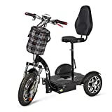 ECOXTREM Triciclo eléctrico para Movilidad Reducida con sillín Regulable....