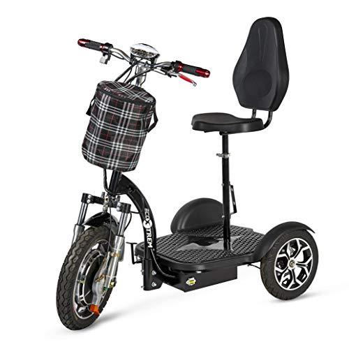ECOXTREM Triciclo eléctrico para Movilidad Reducida...