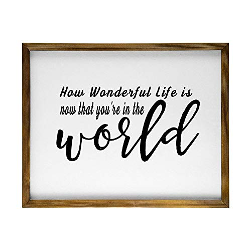 Wall Decor Signs with Inspirational Sayings 30 x 55 CM Rustic Wood Framed Modern Farmhouse Wall Hanging Art - How Wonderful Life Is Now That You'Re in The World