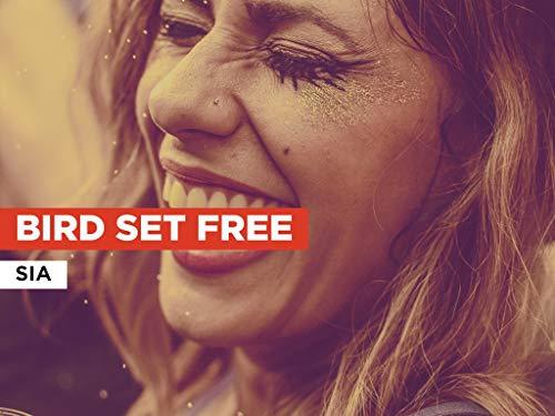 Bird Set Free al estilo de Sia