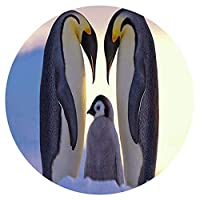 十代の若者たちと子供のための1000ピースのジグソーパズル-ペンギンの家族-ゲームの誕生日フェスティバルギフト円形パズル