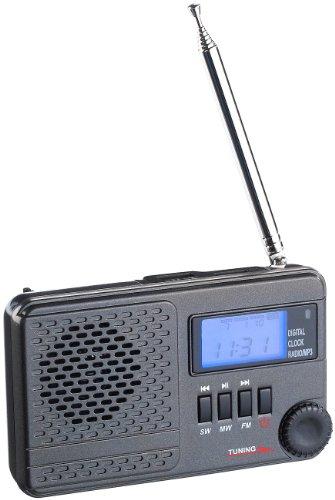 auvisio Weltradio: Weltempfänger WWR-100.mp3 mit DSP-Rauschunterdrückung & MP3 (Radio Weltempfänger)