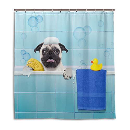 MyDaily Duschvorhang mit lustigem Mops-Motiv, 182,9 x 182,9 cm, schimmelresistent und wasserdichte Polyester-Dekoration Badezimmer Vorhang