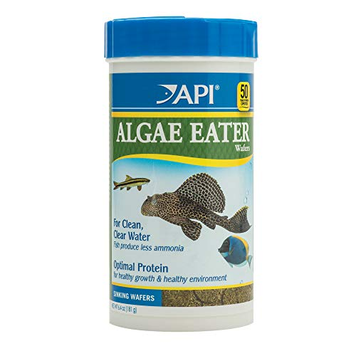 API ALGAE EATER WAFERS Algae Wafer Fish Food 6.4-Ounce Container