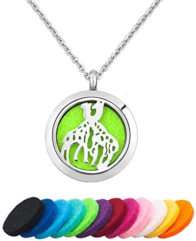 Top 10 Best essential oil necklace stainless steel Reviews