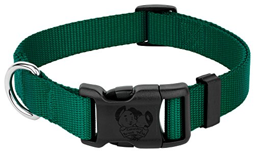 Country Brook Petz - 25+ Vibrant Colors - American Made Deluxe Nylon Dog Collar with Buckle (Large, 1 Inch Wide, Green)