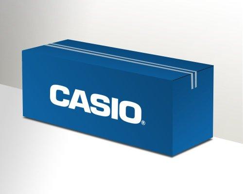 Originale Casio XR-24RD1 nastro (nero, rosso, 8m x 24mm) per CW-L 300, KL 7400, KL 8100, KL 820, KL 8200, KL-P 1000