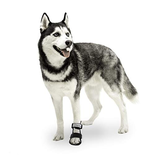 Walkin' Pet Splint for Dogs | Dog Bootie Style Foot Splint for Dogs with Arthritis and Injuries | Includes Foam Inserts for Custom Fit