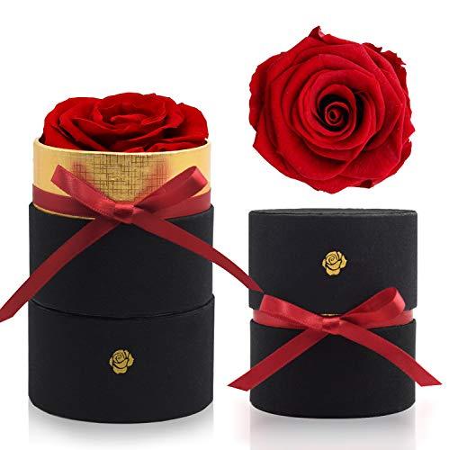 iteaauk Ewige Rosen, Echte Rosen, Die Schöne und das Biest Rose Geschenk Kit, für Valentinstag, Geburtstag, Hochzeit, Muttertag, Jubiläum, Weihnachtstag - Rot