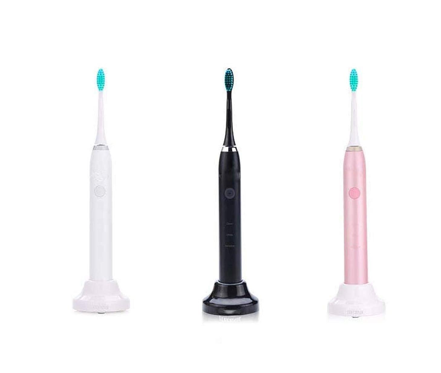 時計心配前置詞Lectric歯ブラシ、誘導充電式歯ブラシ、充電式ソニック自動歯ブラシ、インテリジェントタイミングチェンジエリアリマインド、ミュート防水(カラー:ブラック)