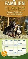 Einmal Bullterrier - immer Bullterrier - Familienplaner hoch (Wandkalender 2022 , 21 cm x 45 cm, hoch): Wunderbare Fotografien von Bullterriern. (Monatskalender, 14 Seiten )