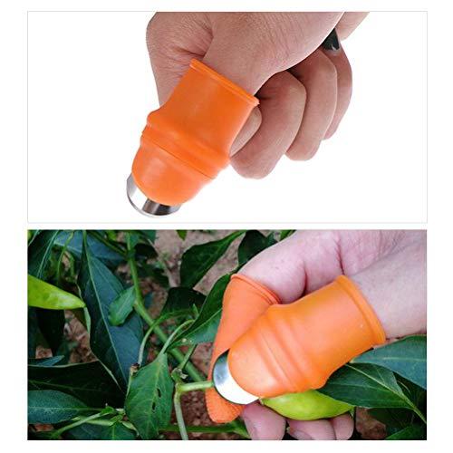 Ettzlo Ensemble de pinces à doigts pour récolter des plantes, des fruits et des légumes