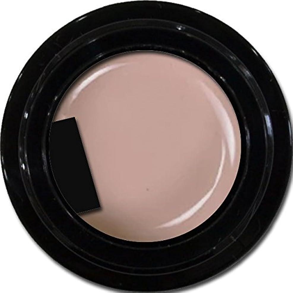 補正検出調整可能カラージェル enchant color gel M504 GreaseMocha 3g/ マットカラージェル M504 グレースモカ 3グラム