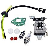CYWVYNYT Carburador para desbrozadora de 52 cc, 49 cc, 43 cc, kit de carburo, con junta, manguera, bujía y filtro de gasolina (1 juego)