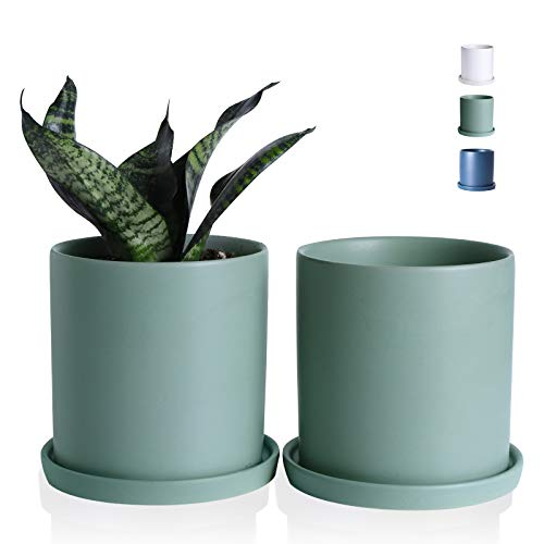 Wencassy Ceramic Flower Plant Pots- 4.5 Inch Cylinder Ceramic Modern Planters Indoor Bonsai Container with Drainage Hole and Tray - Set of 2, Sage Green (Plants Not Included)