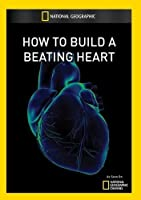 How to Build a Beating Heart [DVD] [Import]