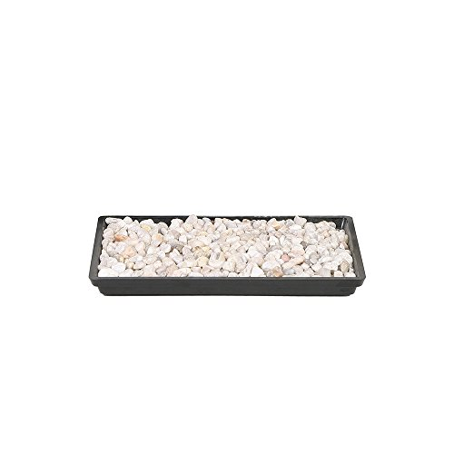 Brussel's 8' Humidity Tray with Decorative Rocks