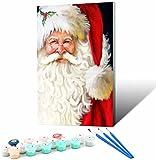Vfvozr Principiantes de Pintura Digital_Soñar con Papá Noel Nevado_para Adultos 4 Pinturas con Pintura_Digital Kit de Pintura acrílica de 24 Colores_30x45cm_Marco de Bricolaje