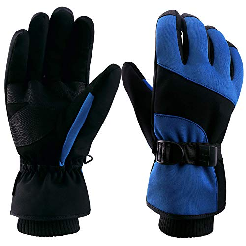 boildeg Skihandschuhe,Herren Ski Snowboard Handschuhe Wasserdicht Warm Winterhandschuhe Winddicht (Schwarz/Blau, L)
