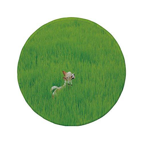 Rutschfreies Gummi-rundes Mauspad, Natur, verspielter Chihuahua-Hündchen im Gras Nettes Tier-Haustier-Bild des besten Freundes, ferngrüne Creme, 7.9