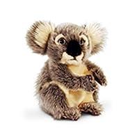 (キール・トイズ) Keel Toys コアラのぬいぐるみ プラッシュトイ 20cm (ワンサイズ) (ブラウン)
