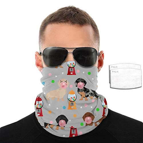 Srtgsyhrt Dachshund Variety Face Mask Neck Gaiter Balaclava Warm Face Cover with 2/6/10 Filters