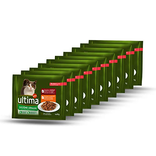 Ultima Cibo Umido per Gatti per Prevenire Problemi alle Vie Urinarie, 10 Multipacks de 4 x 85 g, Totale: 3.4 kg