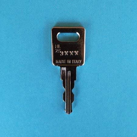 Ersatzschlüssel Für ältere Jetbag Und Thule Dachboxen Skiboxen Schlüsselcode 3001a Bis 3500a Der Schlüssel Ist Beidseitig Gefräst Schlüssel Th Code 3011 Baumarkt