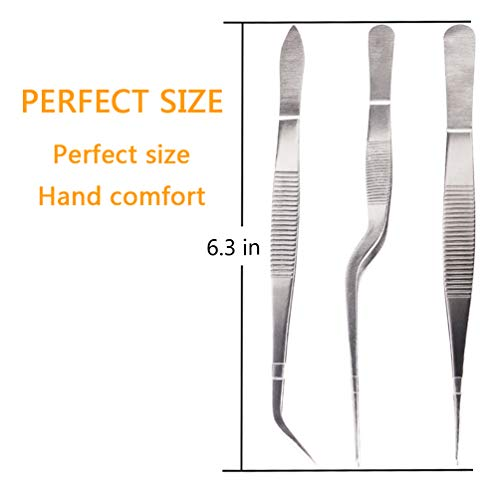 Rivoean Kitchen Cooking Tweezers Culinary,3 Piece Set Stainless Steel Tweezer Precision Tongs Offset Tip for Cooking Food Design styling(6.3-Inch)