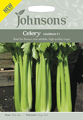 Johnsons Seeds Graines de céleri Hadrian F1-1