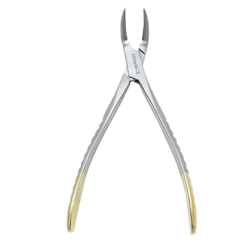 ナースぼんやりした農民Healifty 歯科ピック1ピース歯科ペンチステンレス鋼残留ルート鉗子湾曲ピンセット歯科ラボ用品